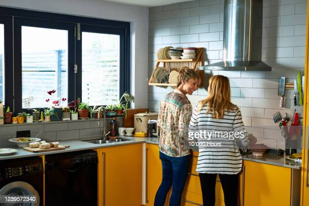 happy lesbian couple cooking together - cooking stock pictures, royalty-free photos & images