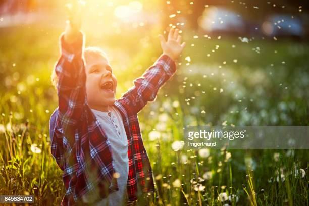 Gelukkig jongetje in paardebloem veld