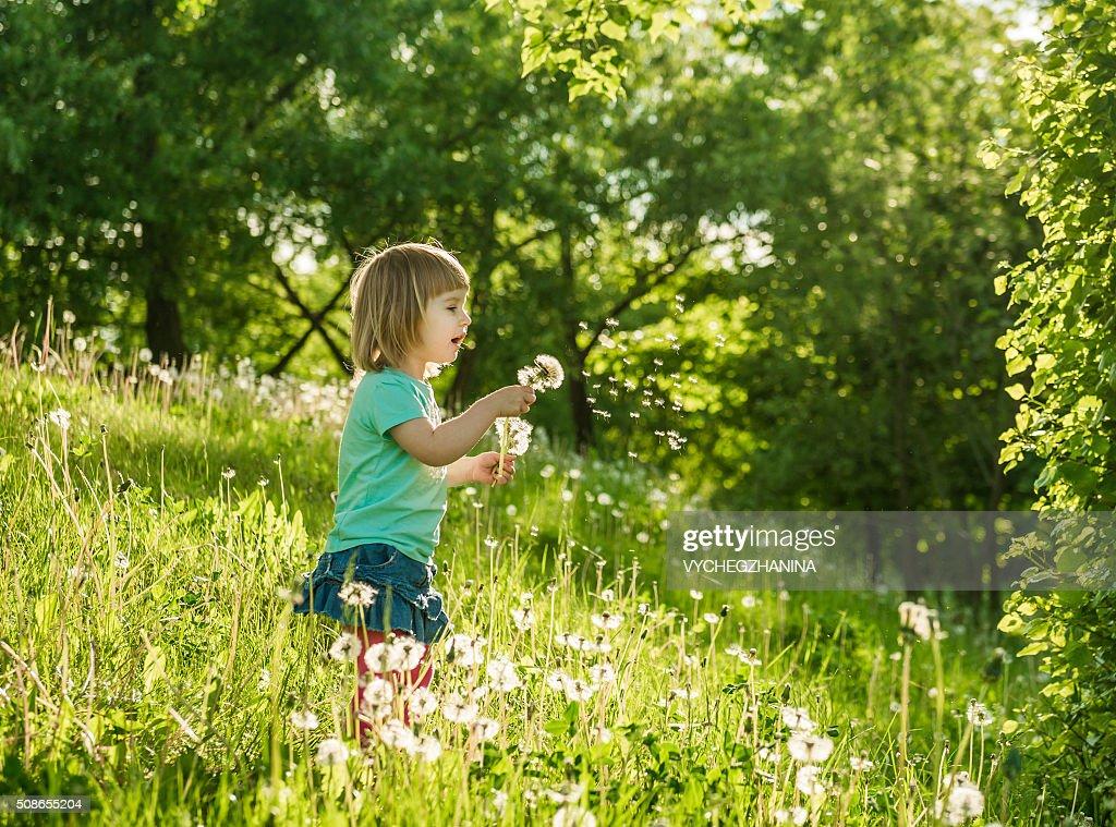 Happy little girl on the field : Stock Photo