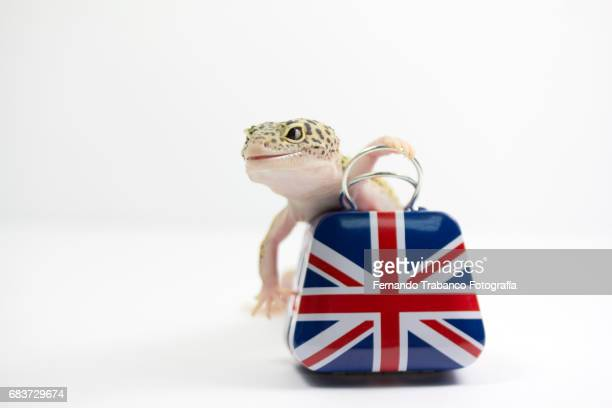 Happy lizard carrying a suitcase because he is going to travel for the brexit of England