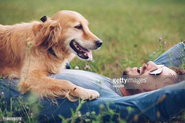 happy man outdoors with his dog - canine stock pictures, royalty-free photos & images
