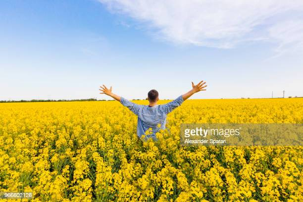 happy man with outstretched arms in field with yellow flowers - al centro foto e immagini stock