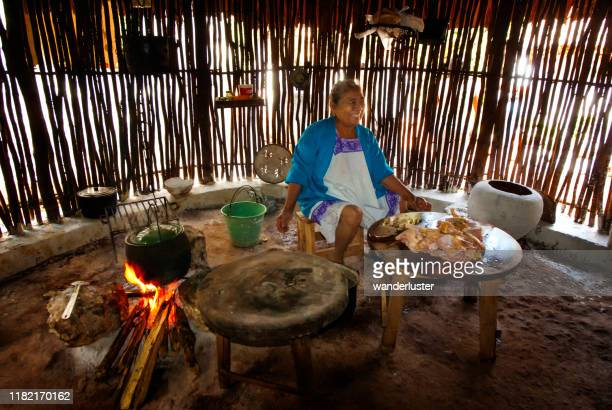 happy mayan woman cooking food - yucatan stock pictures, royalty-free photos & images
