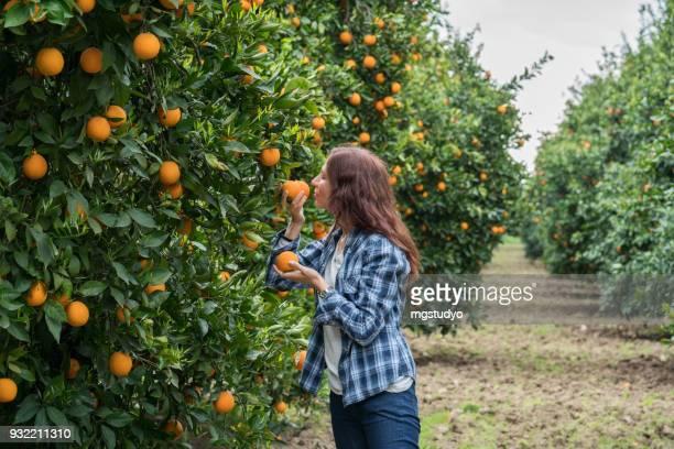 feliz mediados de mujeres adultas en jardín naranja - orange farm fotografías e imágenes de stock