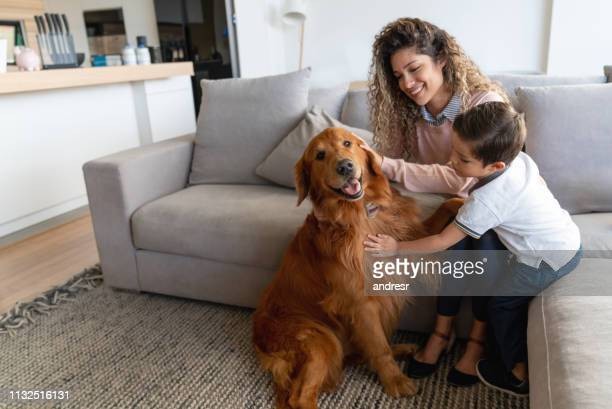 happy mother and son at home petting their dog - pets stock pictures, royalty-free photos & images
