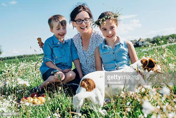 happy mother and two children with dog in meadow - dog eats out girl stock pictures, royalty-free photos & images