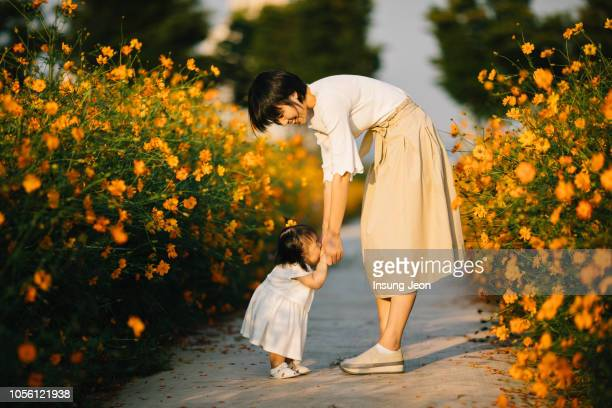 happy mother with baby in yellow cosmos flower field - two generation family stock pictures, royalty-free photos & images