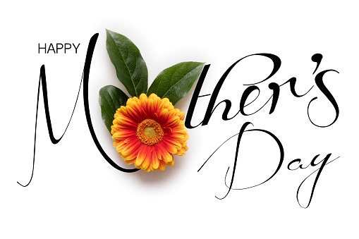 Happy Mother's Day Background. Flat lay greeting card with beautiful gerbera flowers on white background. 1125704260
