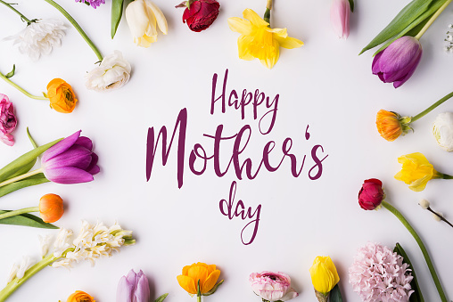 Happy mothers day composition. Flowers on white background. Studio shot. 952117258