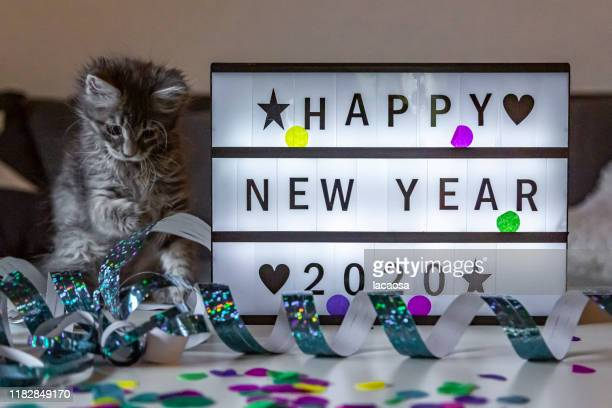 happy new year 2020 on a lightbox - hogmanay stock pictures, royalty-free photos & images