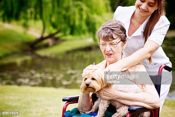 Happy nurse tends old woman in wheelchair with pet dog