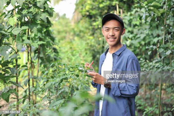 happy of smiling young asian farmer male holding the notebook on green garden - indonesia stock pictures, royalty-free photos & images