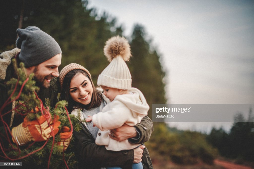 Happy parents with their daughter picking out a Christmas tree : Stock Photo