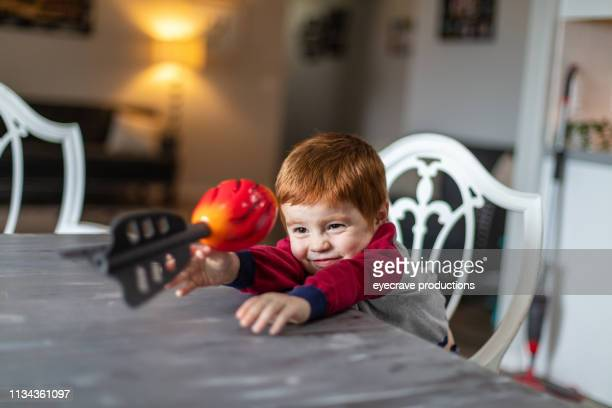 happy redhead boy active and content at home with pet dog - hairy balls stock photos and pictures
