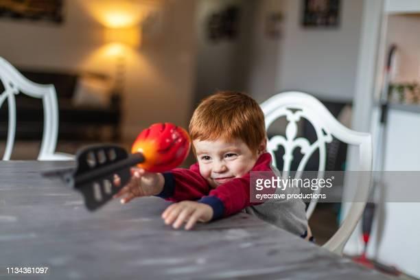 happy redhead boy active und content zu hause mit tierhund - fangen stock-fotos und bilder