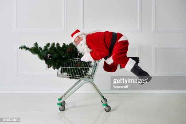Happy Santa Claus carrying Christmas tree in a shopping cart