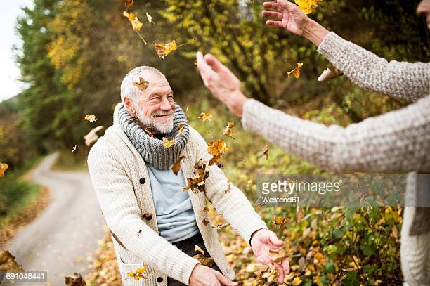 happy senior man and his wife playing with autumn leaves - naughty wife stock photos and pictures