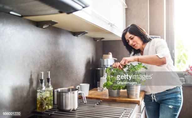 mujer senior feliz en la cocina en casa. - hierba planta fotografías e imágenes de stock