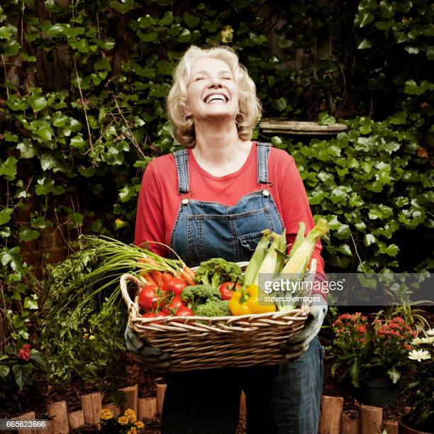 happy senior woman with garden vegetables. - harvest basket stock pictures, royalty-free photos & images
