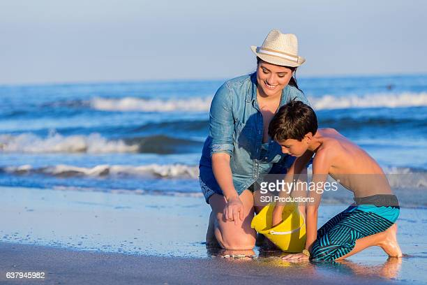happy siblings collect seashells during beach vacation - galveston stock pictures, royalty-free photos & images