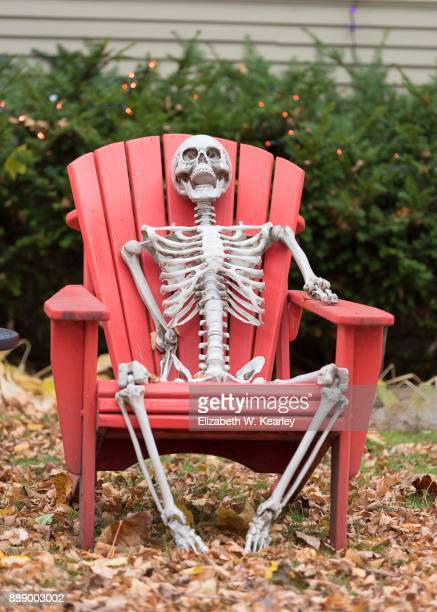 happy skeleton sitting in a chair - human skeleton stock photos and pictures