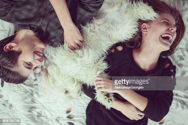 happy smiling couple lying on bed and playing with pet dog - fratello foto e immagini stock