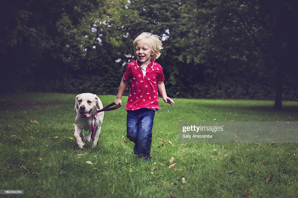 Happy smiling little boy walking the dog : Stock Photo