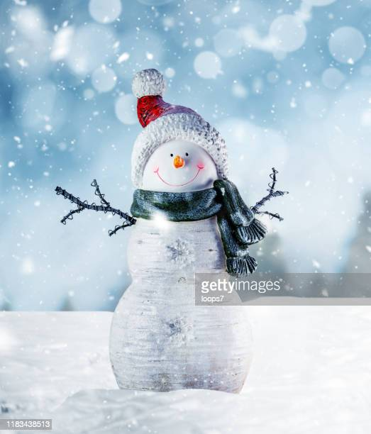 happy snowman in winter scenery - snowman stock pictures, royalty-free photos & images