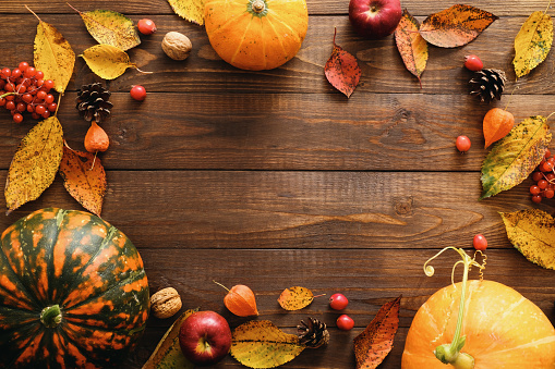 Happy Thanksgiving concept. Autumn composition with ripe orange pumpkins, fallen leaves, dry flowers on rustic wooden table. Flat lay, top view, copy space. 1174422024