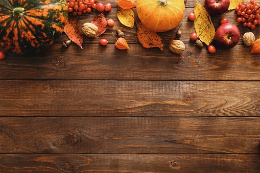 Happy Thanksgiving concept. Autumn composition with ripe orange pumpkins, fallen leaves, dry flowers on rustic wooden table. Flat lay, top view, copy space. 1174422535