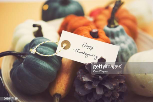 happy thanksgiving pumpkin - thanksgiving stockfoto's en -beelden