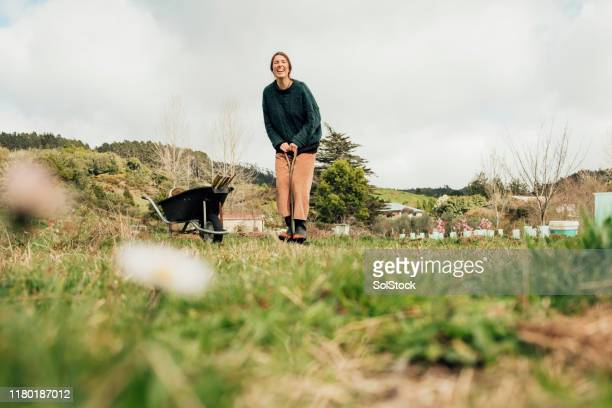 happy to be outdoors - new zealand stock pictures, royalty-free photos & images