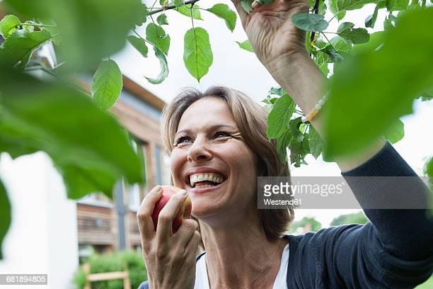 Happy woman eating apple at tree