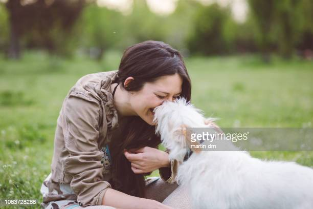 happy woman enjoying her dog in the park - dog walker stock photos and pictures
