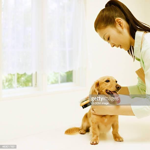Happy Woman Grooming Dog
