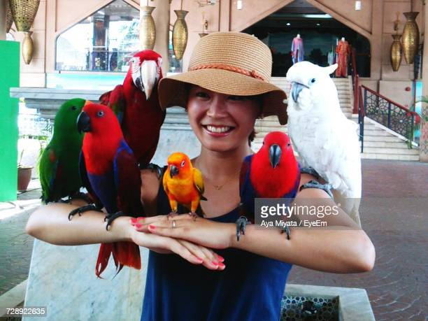 happy woman in hat holding parrots - tropical bird stock pictures, royalty-free photos & images