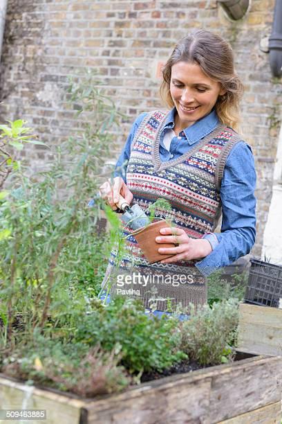 Glückliche Frau im städtischen Stadt Garden Eintopfen Pflanzen, London, GB