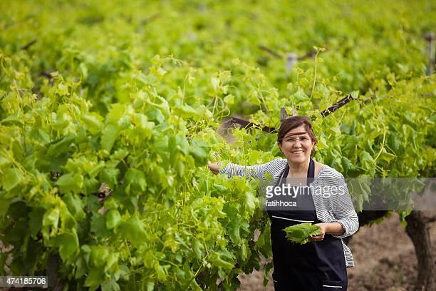 Femme heureuse dans les vignobles