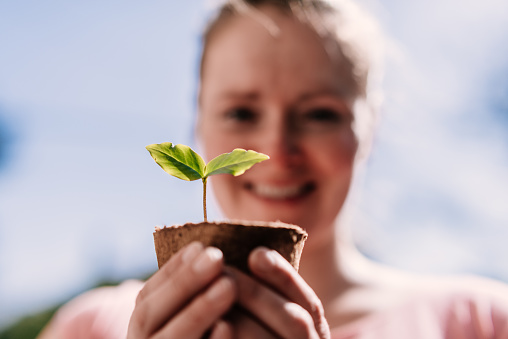 Happy woman looking at seedling outdoor. - gettyimageskorea
