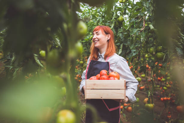 Agriculture Degree Online