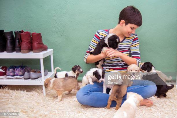 Happy woman playing with puppies