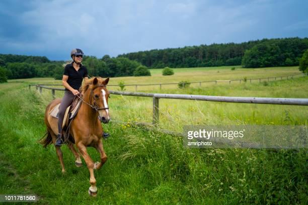 gelukkige vrouw rijden galopperend paard in landelijke omgeving - paardrijden stockfoto's en -beelden