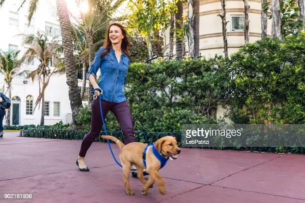mulher feliz andando com seu cachorro labrador em miami beach. - bulevar - fotografias e filmes do acervo