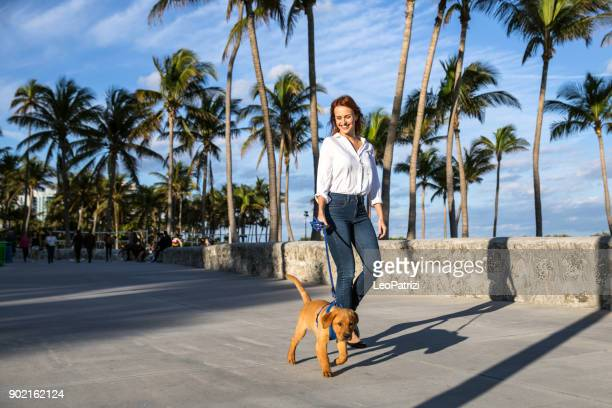 Happy woman walking with his Labrador puppy on the boardwalk in Miami Beach.