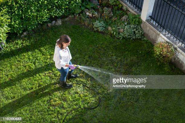 happy woman watering garden with water hose. - watering stock pictures, royalty-free photos & images