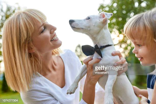 happy woman with daughter holding dog wearing a bowtie outdoors - dog knotted in woman stock pictures, royalty-free photos & images
