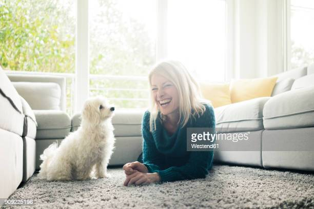 happy woman with dog in living room - maltese islands stock photos and pictures