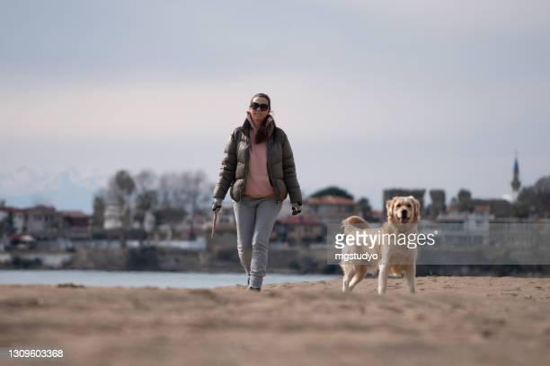 donna felice con il suo cane sulla spiaggia - vertebrato foto e immagini stock