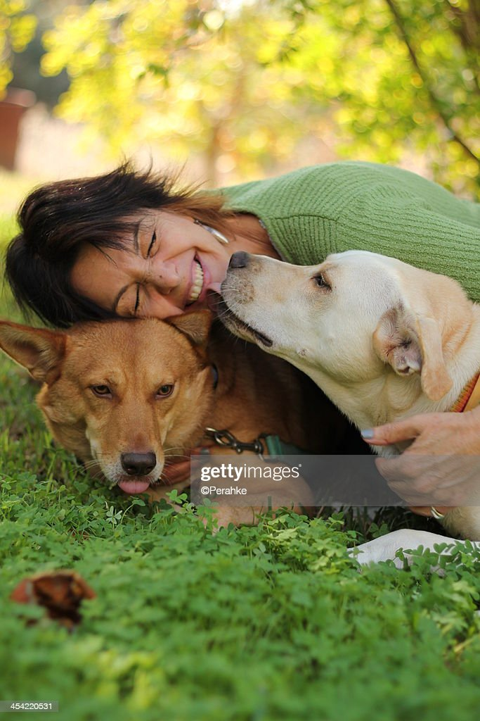 Happy woman with her dogs outdoors : Stock Photo