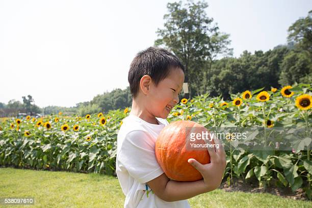Happy young boy picking a pumpkin in the farm land